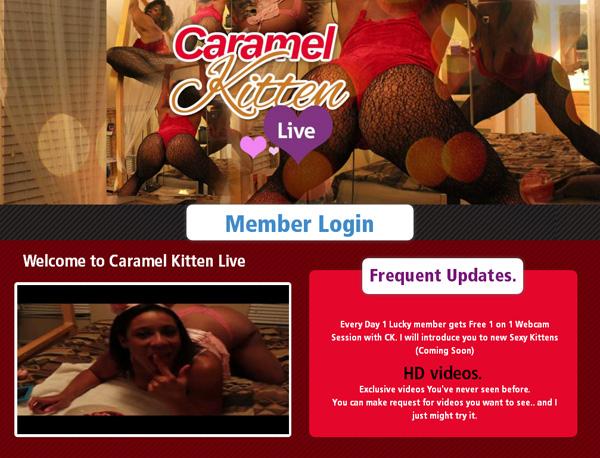 Caramel Kitten Live Accounts Working